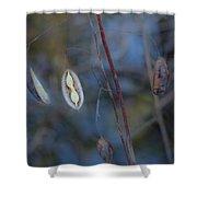 Seeds In A Pod Dark Shower Curtain