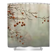 Seeds Of Fall Shower Curtain