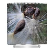 Seeds Ready For Take Off Shower Curtain
