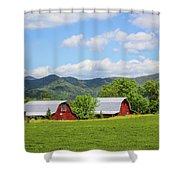Seeing Double Shower Curtain