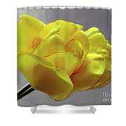 Seeing Double - Tulip Shower Curtain