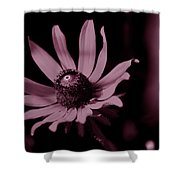 Seeing Life Through Rose-colored Glasses Shower Curtain