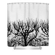 Seine River Trees Shower Curtain