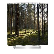Seitseminen National Park Shower Curtain