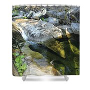 Sekani Oasis Shower Curtain