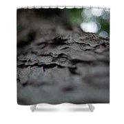 Select Focus Shower Curtain