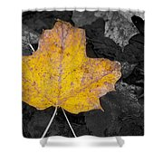 Selective Color Leaf Shower Curtain