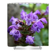 Selfheal Up Close Shower Curtain