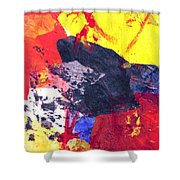 Semi-abstract Collage Shower Curtain