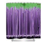 Semiconductor Nanowires, Sem Shower Curtain