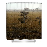Seminole Morning Shower Curtain