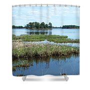 Seney Shower Curtain