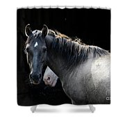 Senna Shower Curtain