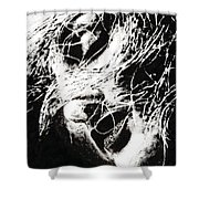 Sensations Shower Curtain