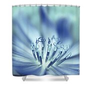 Senses Shower Curtain