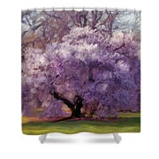 Sensual Secrets Where Passion Blooms Shower Curtain