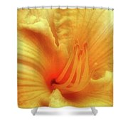 Sensuous Lily Shower Curtain