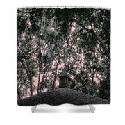 Sentinel Shower Curtain by Eikoni Images