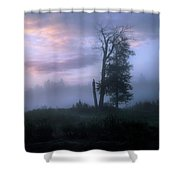 Sentinels In The Valley Shower Curtain