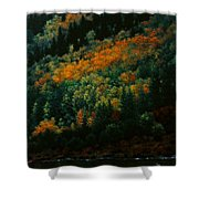 Sentinels Of September Serenity Shower Curtain