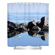 Sentinels  Shower Curtain