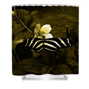 Sepia Butterfly And Flower Shower Curtain