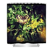 Sepia Butterfly Shower Curtain