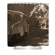 Sepia Cheat Mountain Salamander 2 Shower Curtain