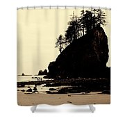 Sepia High Contrast Rialto Beach Shower Curtain