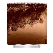 Sepia River Shower Curtain