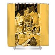 Sepia Toned Glass Slipper Shower Curtain