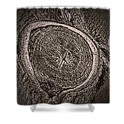 Sepia Tree Rings Shower Curtain