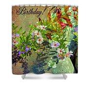 September Birthday Aster Shower Curtain