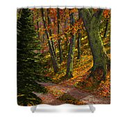 September Road Shower Curtain