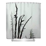 September Snow Shower Curtain