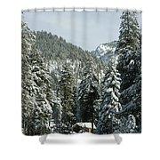 Sequoia National Park 7 Shower Curtain