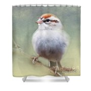 Serendipitous Sparrow  Shower Curtain