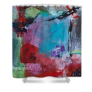 Serendipity 008 Shower Curtain