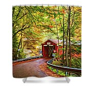 Serendipity - Painted 2 Shower Curtain