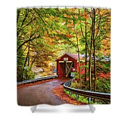 Serendipity Painted Shower Curtain