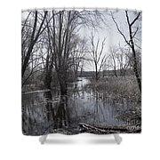 Serene Swampy River Shower Curtain
