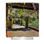 Serene Walkway  Shower Curtain