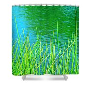 Serenely Aqua Shower Curtain