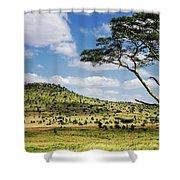 Serengeti Classic Shower Curtain