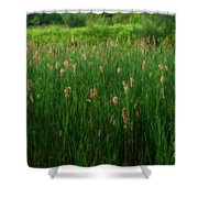 Serenity In Nature Shower Curtain
