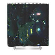 Series 2    Reef Fish Shower Curtain