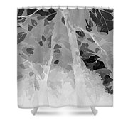 Series Of Black And White 44 Shower Curtain