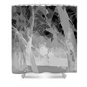 Series Of Black And White 46 Shower Curtain
