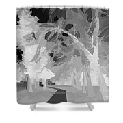 Series Of Black And White 47 Shower Curtain