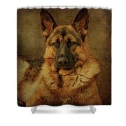 Serious Shower Curtain by Sandy Keeton